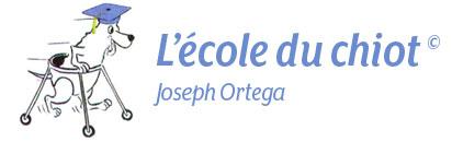 L'école du chiot Ortega